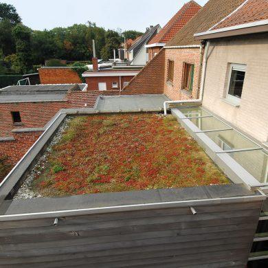 Lapostető szigetelés zöldtető
